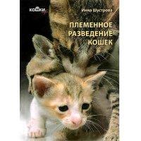 Племенное разведение кошек. Системы племенного разведения