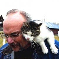 Кто ласковее кот или кошка?