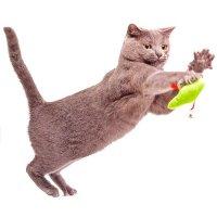 Кошачий интерактив