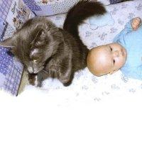 Кошка и младенец