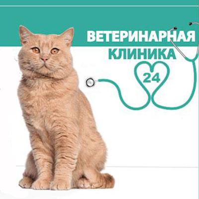 Хирургическое отделение 1 гор больницы оренбург